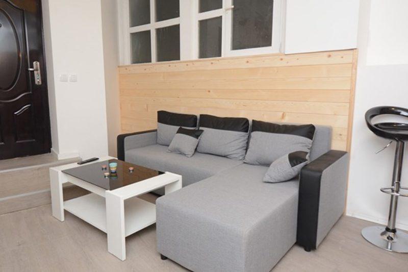 Apartman Spa u Beogradu - izgled dnevnog boravka