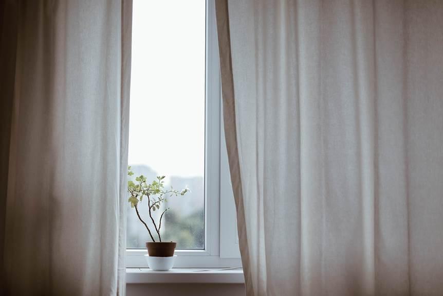 Zavesa na prozoru i cvet